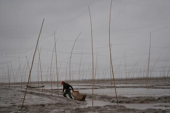 450马力的船,开11个小时才能打到鱼了,以前不过1小时。一位渔船主告诉财新记者。他和几个伙计,正忙着将刚捕捞起的毛蛤卸下。下半年都是亏本的,很多人转行了,去化工厂打工。没有半点收获的喜悦,渔船主摇了摇头道,2017年出口过一批毛蛤到韩国,结果煮出来的水被染红了,遭到退货。 码头如今的光景,在熟悉的人看来,大不如从前人声鼎沸的渔港。化工厂扎根十几年,加速了渔业成为亏本的营生,不少渔民不得不卖掉渔船,四处打零工谋生。 以前,海边的水是暗红色的。饱受污染之苦,码头上的渔民们谈及此话题,滔滔不绝。 环